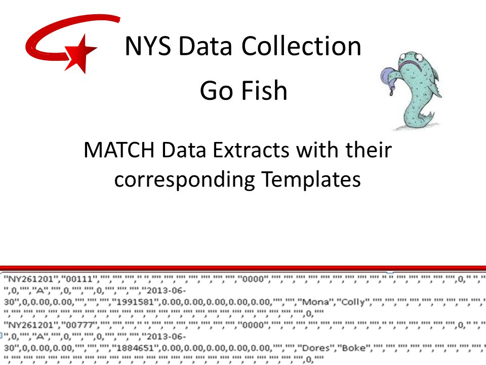 MATCH Data Extracts with their corresponding Templates Go Fish NYS Data Collection