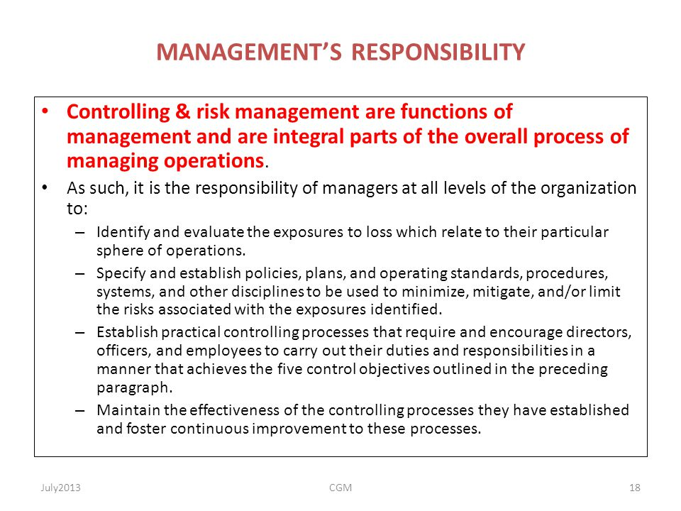 MANAGEMENT'S RESPONSIBILITY Controlling & risk management are functions of management and are integral parts of the overall process of managing operat