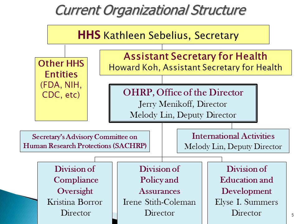 5 5 Current Organizational Structure OHRP, Office of the Director Jerry Menikoff, Director Melody Lin, Deputy Director Division of Compliance Oversigh