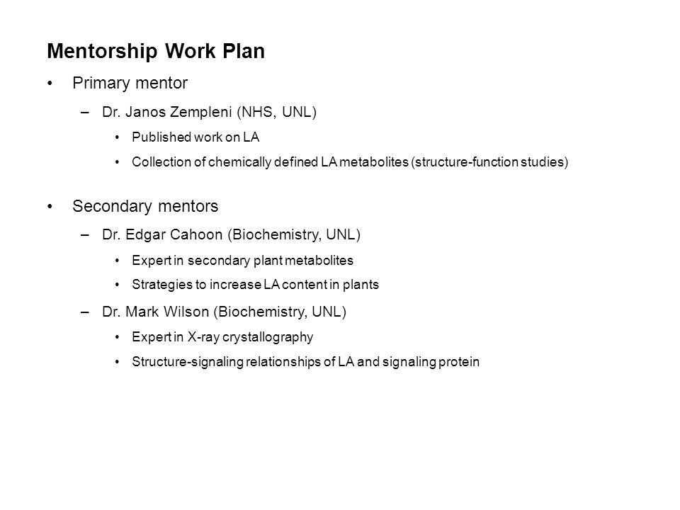 Mentorship Work Plan Primary mentor –Dr.