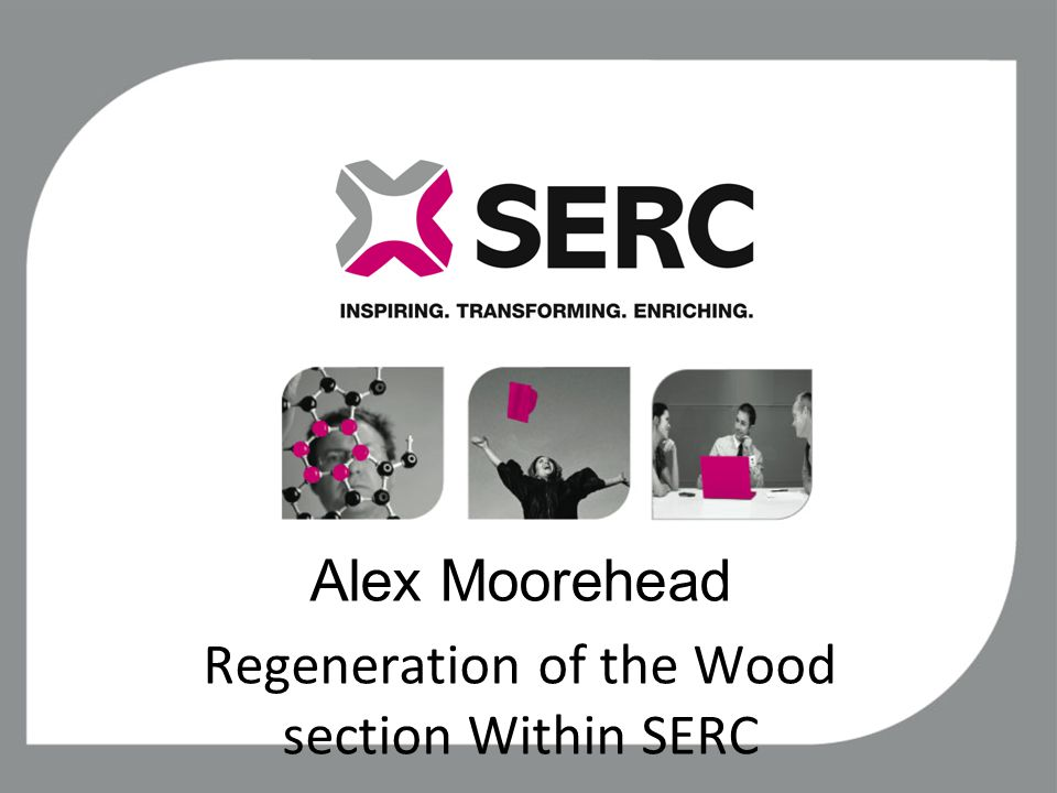 Alex Moorehead Regeneration of the Wood section Within SERC