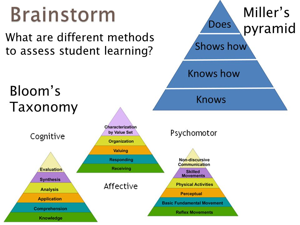 What are different methods to assess student learning? Miller's pyramid Bloom's Taxonomy