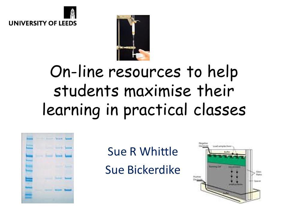 On-line resources to help students maximise their learning in practical classes Sue R Whittle Sue Bickerdike