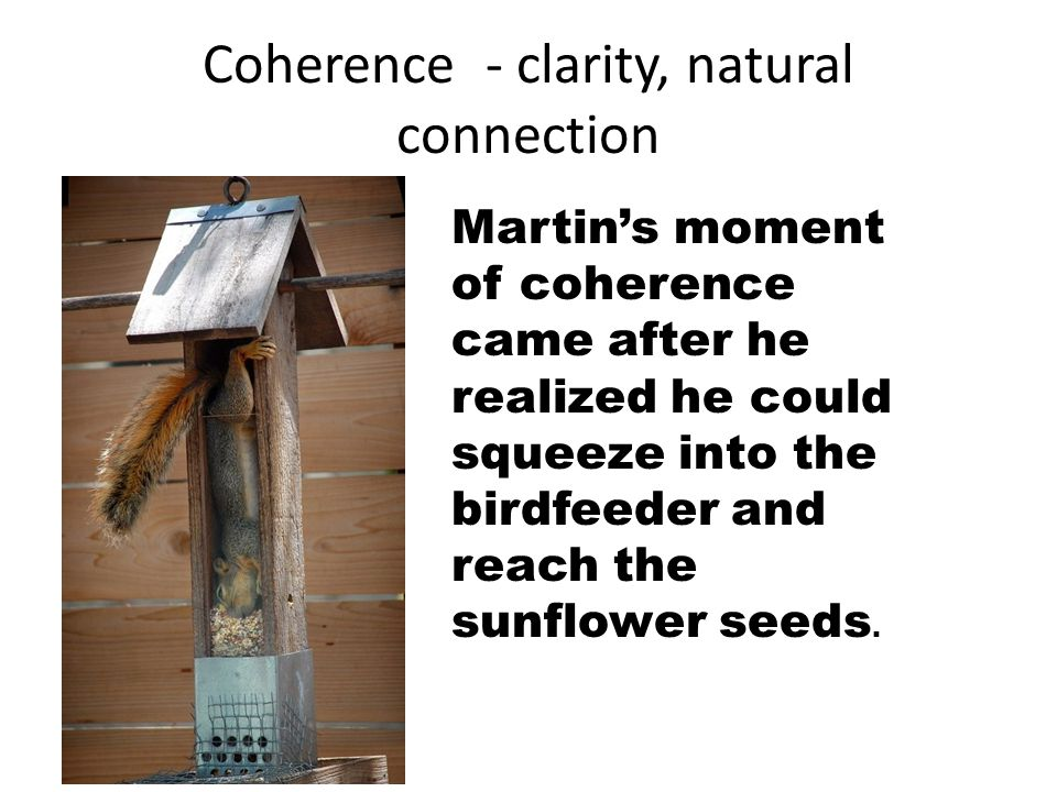 Coherence - clarity, natural connection Martin's moment of coherence came after he realized he could squeeze into the birdfeeder and reach the sunflower seeds.
