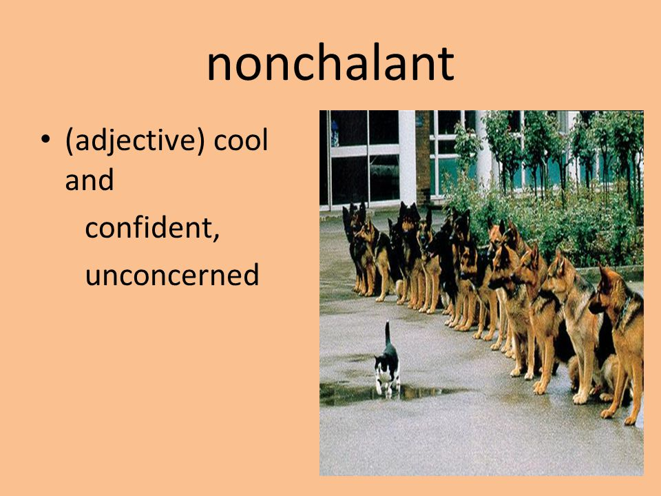 nonchalant (adjective) cool and confident, unconcerned