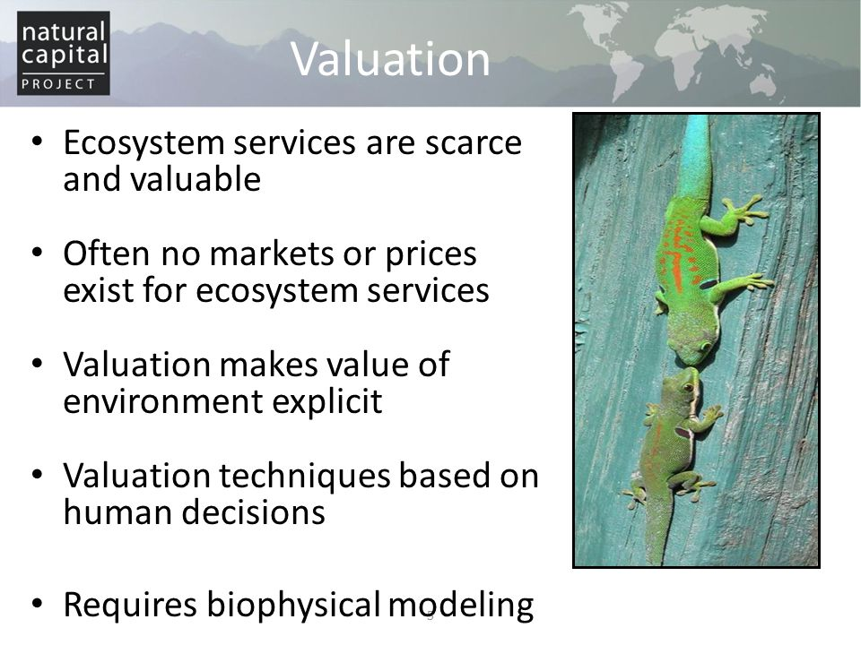 Market valuation Valuation using conventional good/service prices In a competitive market, the market price depicts the marginal benefit of a good/service Net benefit can be calculated by combining price with quantity and cost estimates Market price method – Actual prices of goods/services Avoided damages method – Costs incurred in the absence of the service – Market prices of equivalent non-ecosystem services