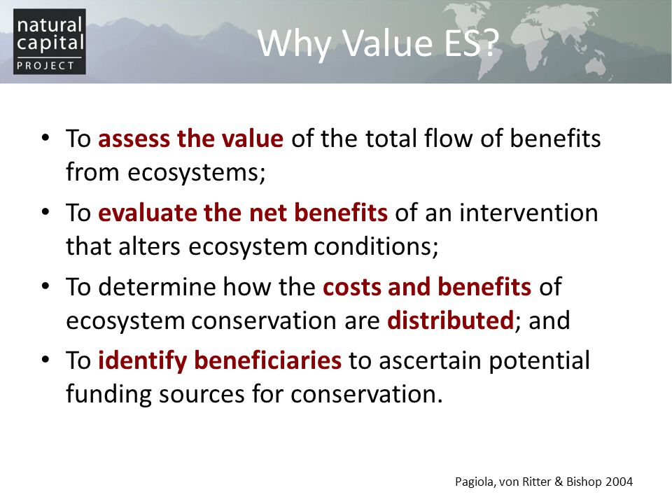 Benefits / Value Transfer With resource or time constraints, novel analysis may be impossible Benefits transfer uses existing studies to inform valuation efforts Spatial variability demands careful application of this approach – biophysical attributes (climate, quality, size…) – socio-economic attributes (management, disturbance…)