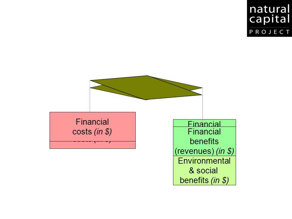 Environmental & social benefits (in $) Financial costs (in $) Financial benefits (revenues) (in $) Financial costs (in $) Environmental & social benef