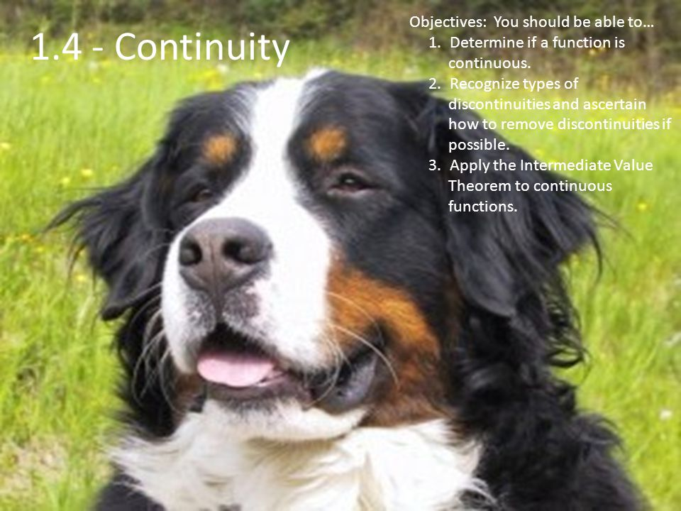 1.4 - Continuity Objectives: You should be able to… 1.