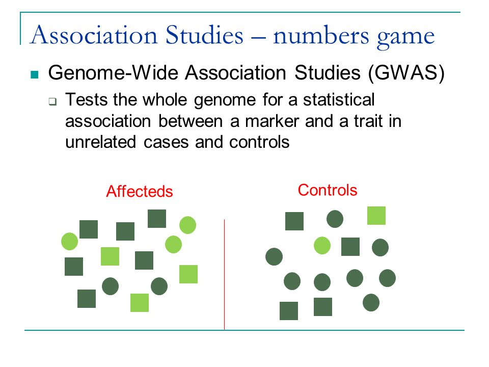 Association Studies – numbers game Genome-Wide Association Studies (GWAS)  Tests the whole genome for a statistical association between a marker and