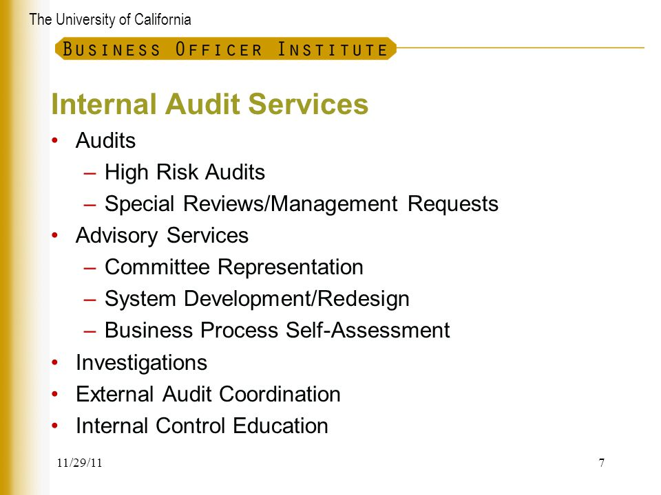 The University of California Internal Audit Services Audits –High Risk Audits –Special Reviews/Management Requests Advisory Services –Committee Repres