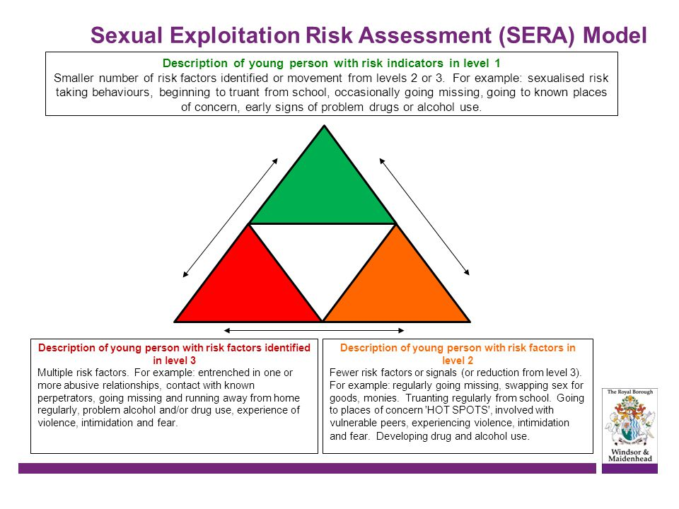 Description of young person with risk indicators in level 1 Smaller number of risk factors identified or movement from levels 2 or 3. For example: sex