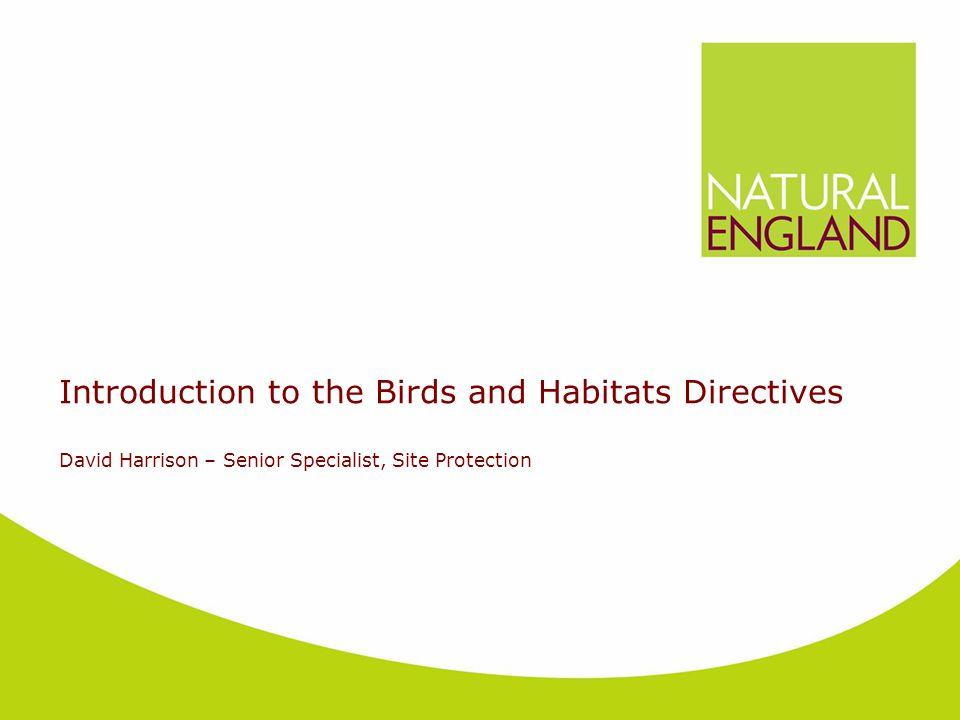 Introduction to the Birds and Habitats Directives David Harrison – Senior Specialist, Site Protection