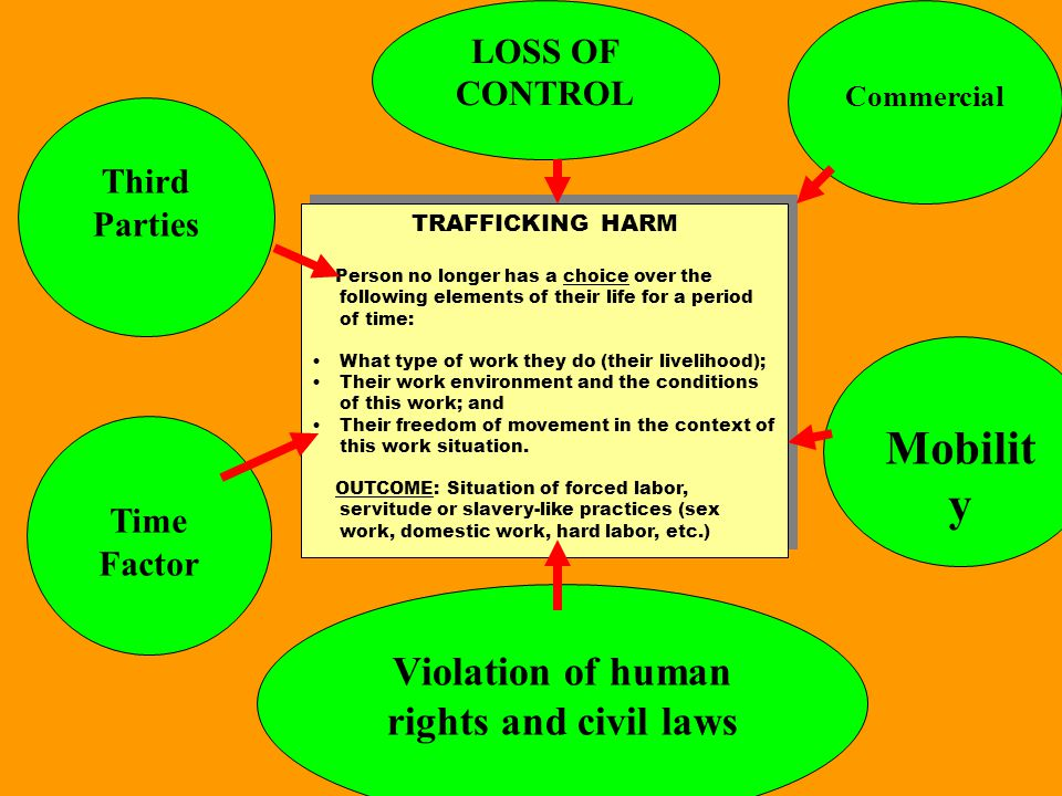 TRAFFICKING HARM Person no longer has a choice over the following elements of their life for a period of time: What type of work they do (their liveli