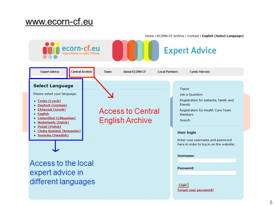 5 Access to the local expert advice in different languages Access to Central English Archive www.ecorn-cf.eu