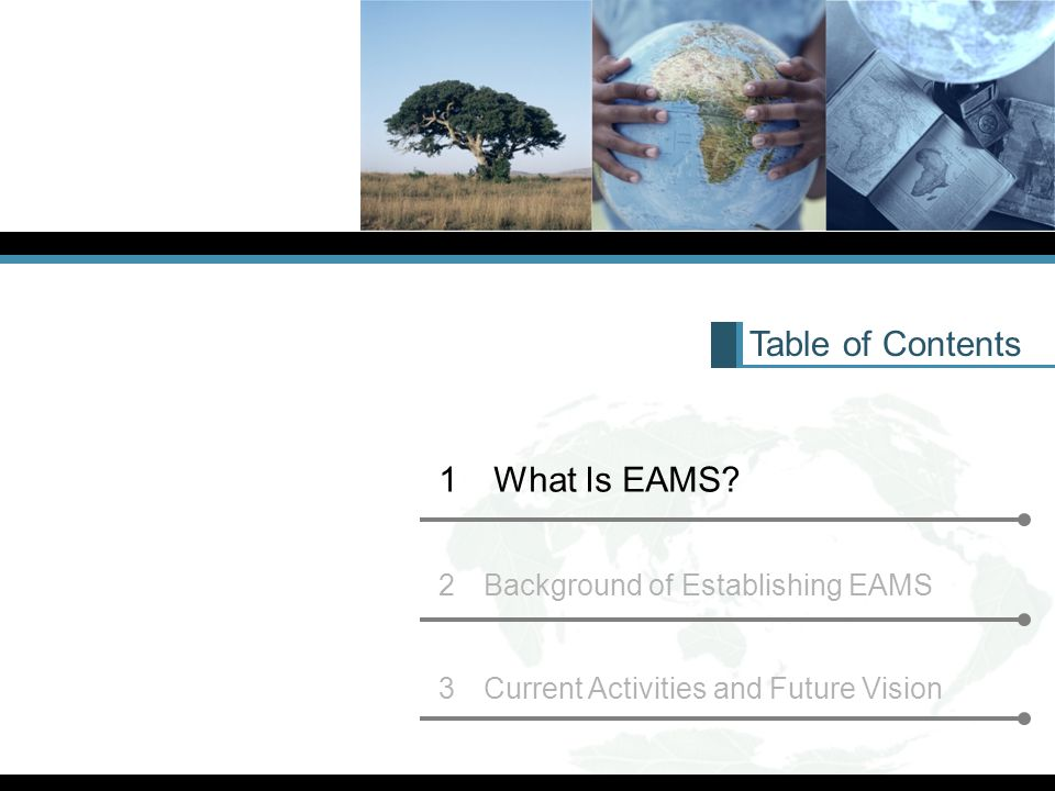 Table of Contents 1 What Is EAMS.