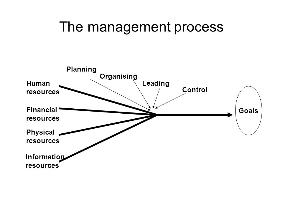 The management process Planning Organising Leading Control Human resources Financial resources Physical resources Information resources Goals