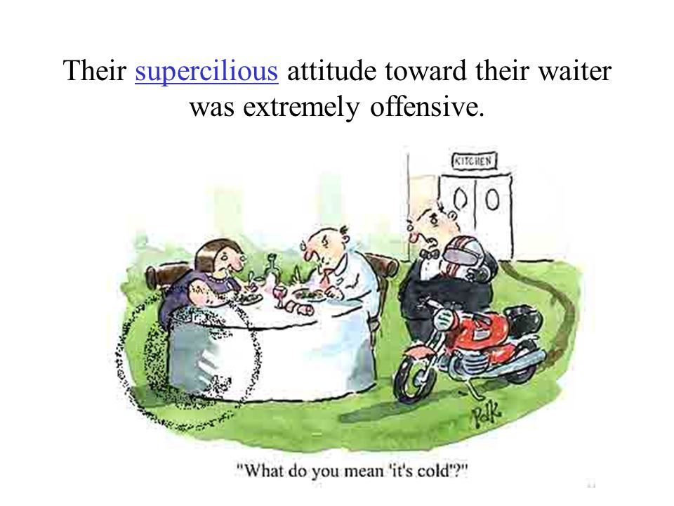 Their supercilious attitude toward their waiter was extremely offensive.