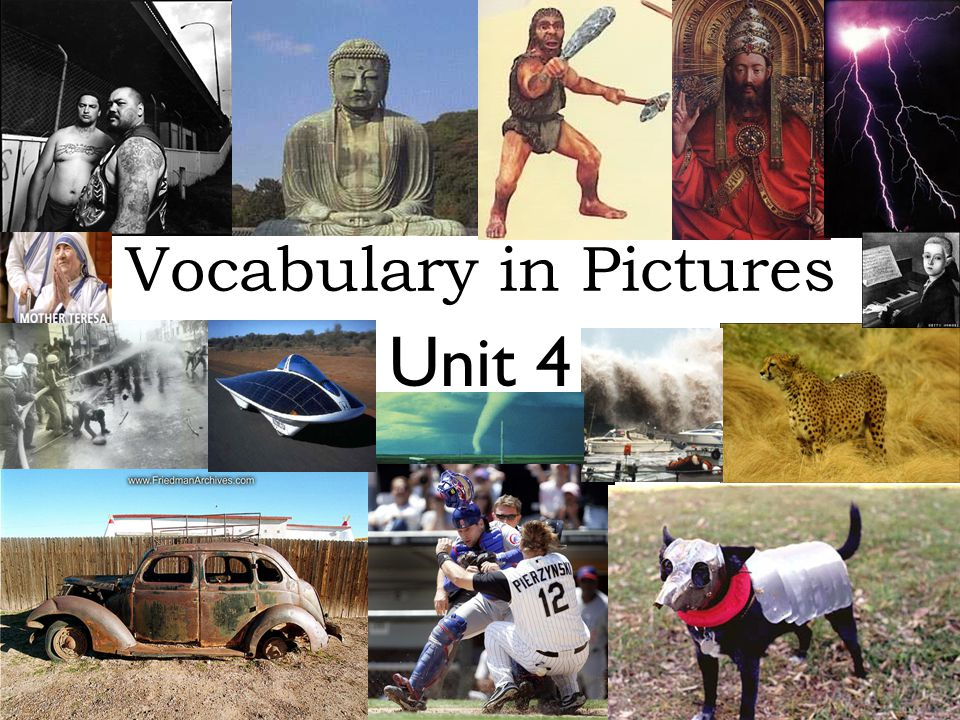 Unit 4 Vocabulary in Pictures