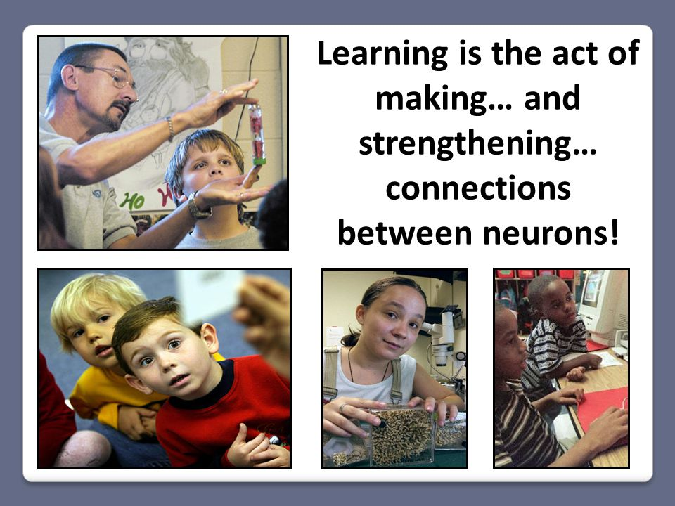 Learning is the act of making… and strengthening… connections between neurons!