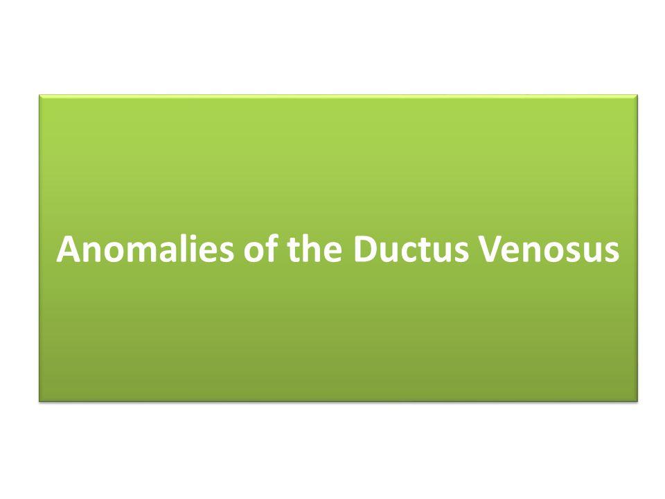 Anomalies of the Ductus Venosus