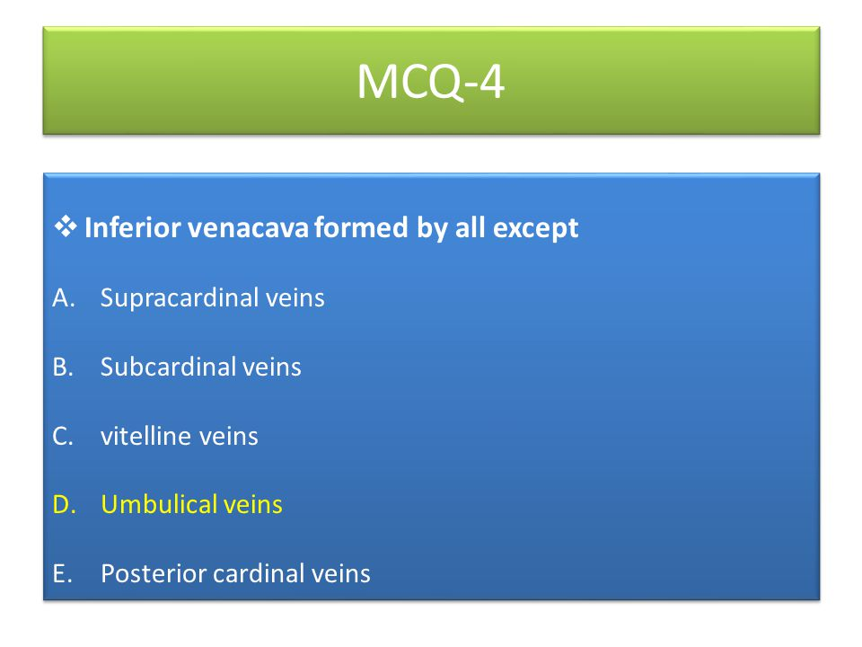 MCQ-4  Inferior venacava formed by all except A.Supracardinal veins B.Subcardinal veins C.vitelline veins D.Umbulical veins E.Posterior cardinal veins  Inferior venacava formed by all except A.Supracardinal veins B.Subcardinal veins C.vitelline veins D.Umbulical veins E.Posterior cardinal veins