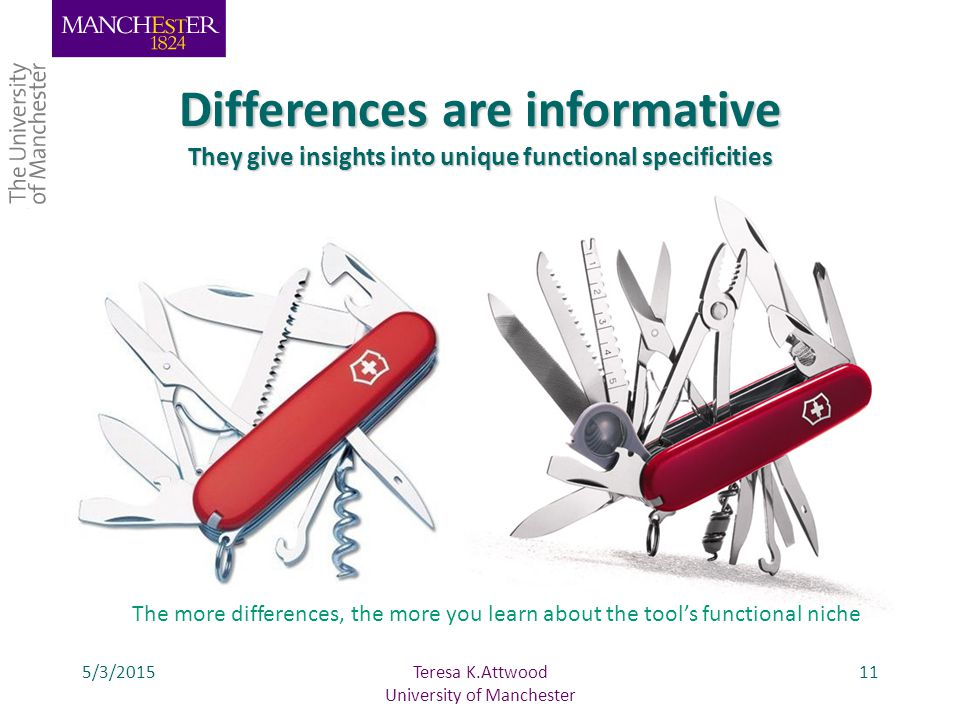 5/3/201511 Differences are informative They give insights into unique functional specificities Teresa K.Attwood University of Manchester The more differences, the more you learn about the tool's functional niche