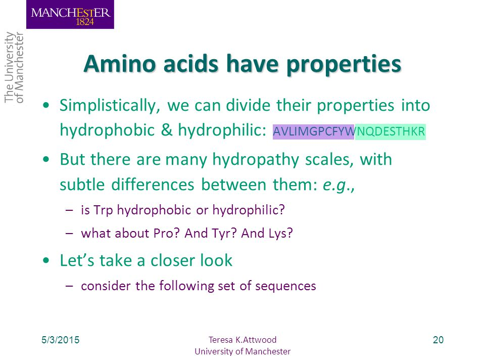 5/3/201520 Amino acids have properties Simplistically, we can divide their properties into hydrophobic & hydrophilic: AVLIMGPCFYWNQDESTHKR But there are many hydropathy scales, with subtle differences between them: e.g., –is Trp hydrophobic or hydrophilic.