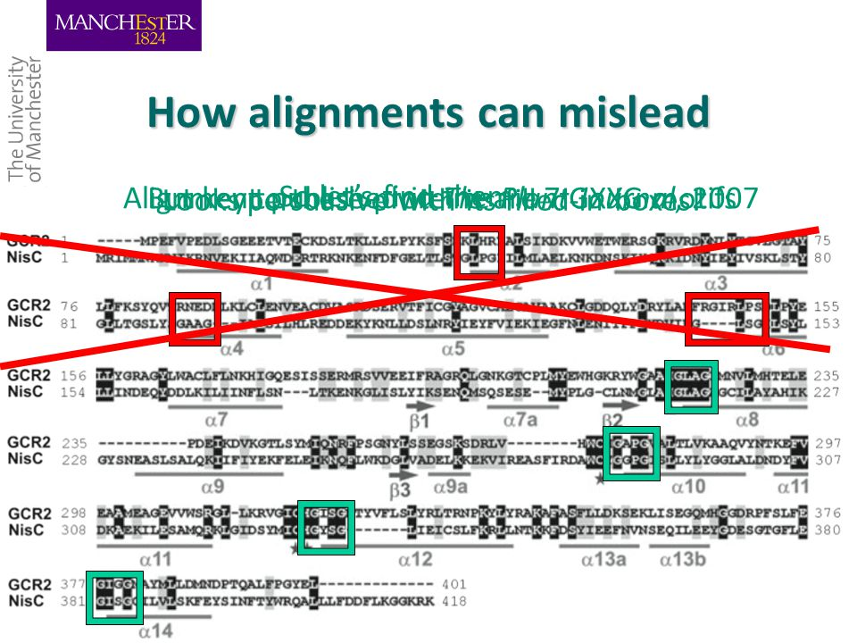 Alignment published in The Plant Journal, 2007 5/3/2015Teresa K.Attwood University of Manchester 41 How alignments can mislead Looks persuasive with its filled-in boxes.