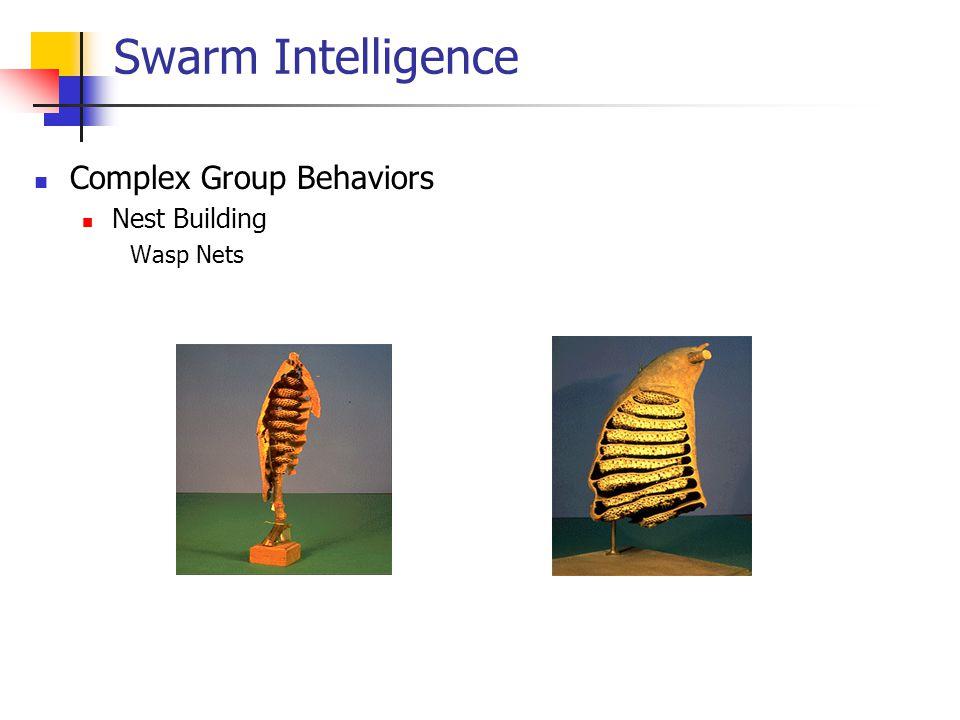 Swarm Intelligence Complex Group Behaviors Nest Building Wasp Nets