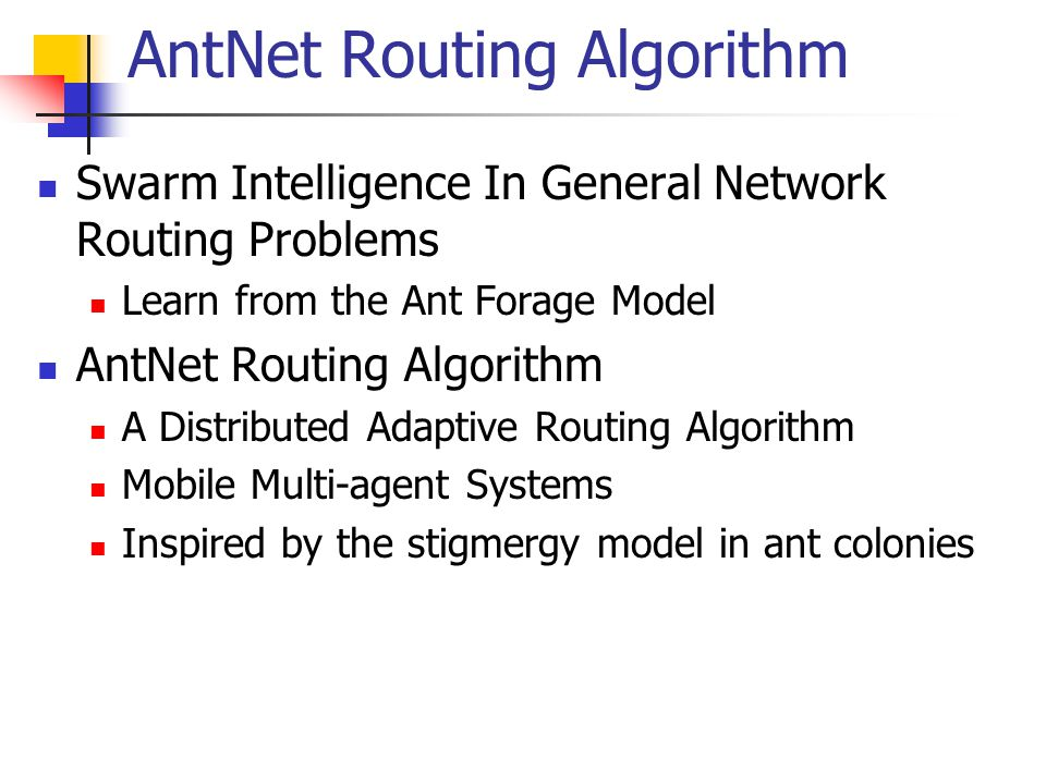 AntNet Routing Algorithm Swarm Intelligence In General Network Routing Problems Learn from the Ant Forage Model AntNet Routing Algorithm A Distributed