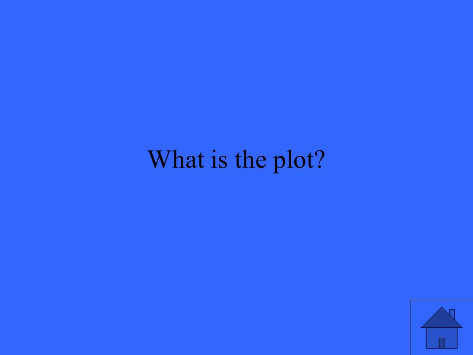 29 What is the plot