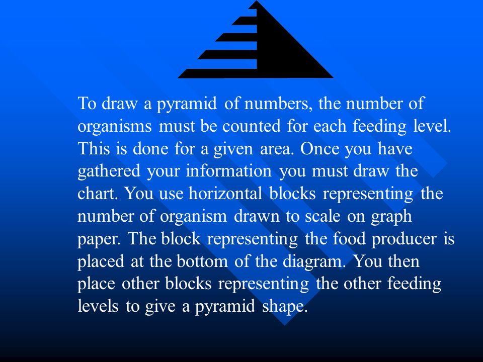 Pyramids Of Numbers A pyramid of number is a diagram showing the amount of energy lost at each level when an organism eat another organism. There are