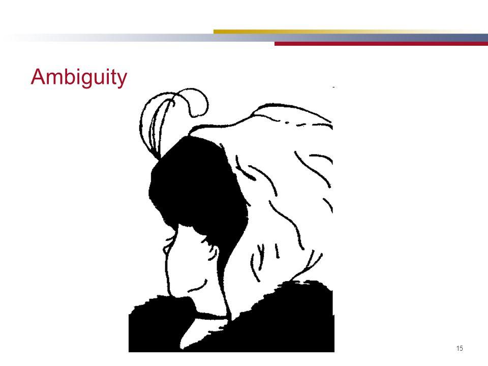 15 Ambiguity