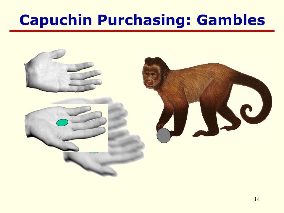 14 Capuchin Purchasing: Gambles