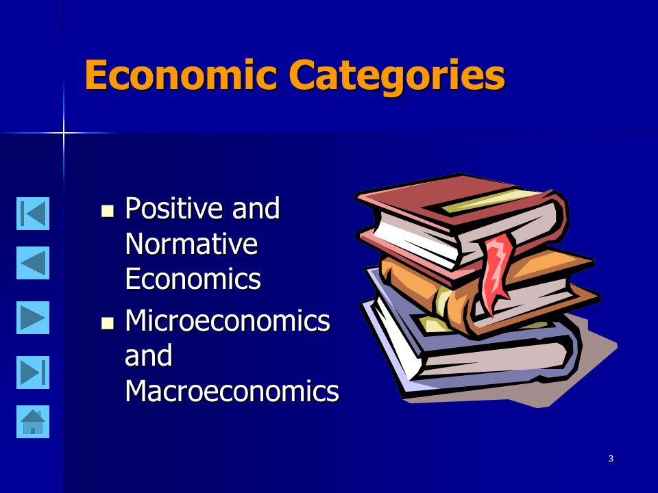 3 Economic Categories Positive and Normative Economics Positive and Normative Economics Microeconomics and Macroeconomics Microeconomics and Macroecon