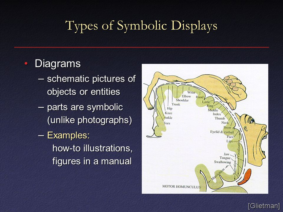 Types of Symbolic Displays DiagramsDiagrams – schematic pictures of objects or entities – parts are symbolic (unlike photographs) – Examples: how-to illustrations, figures in a manual [Glietman]