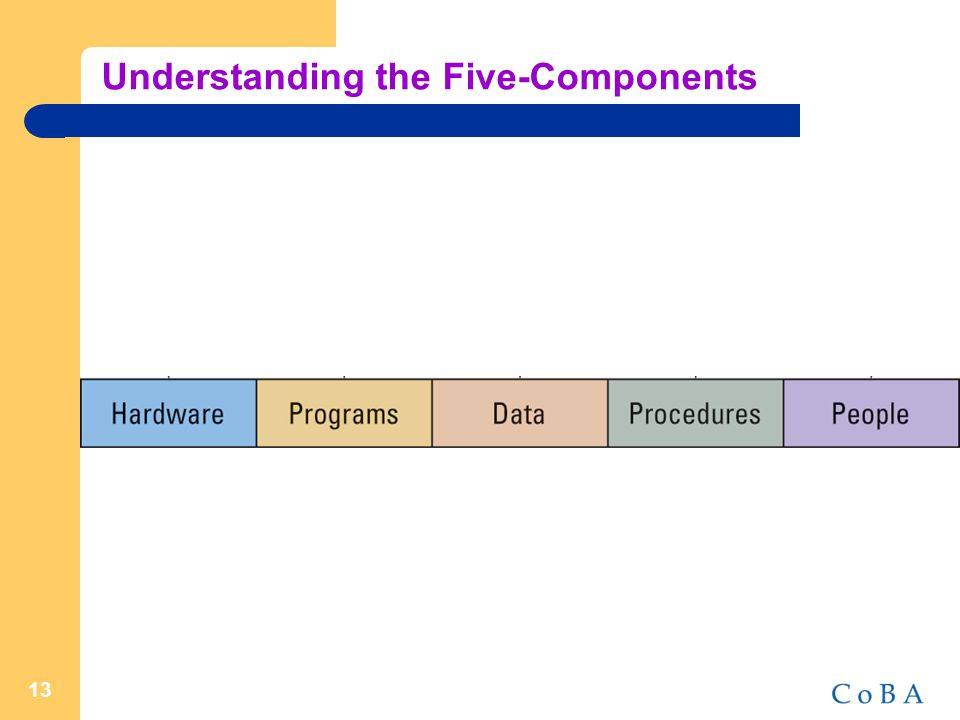 13 Understanding the Five-Components