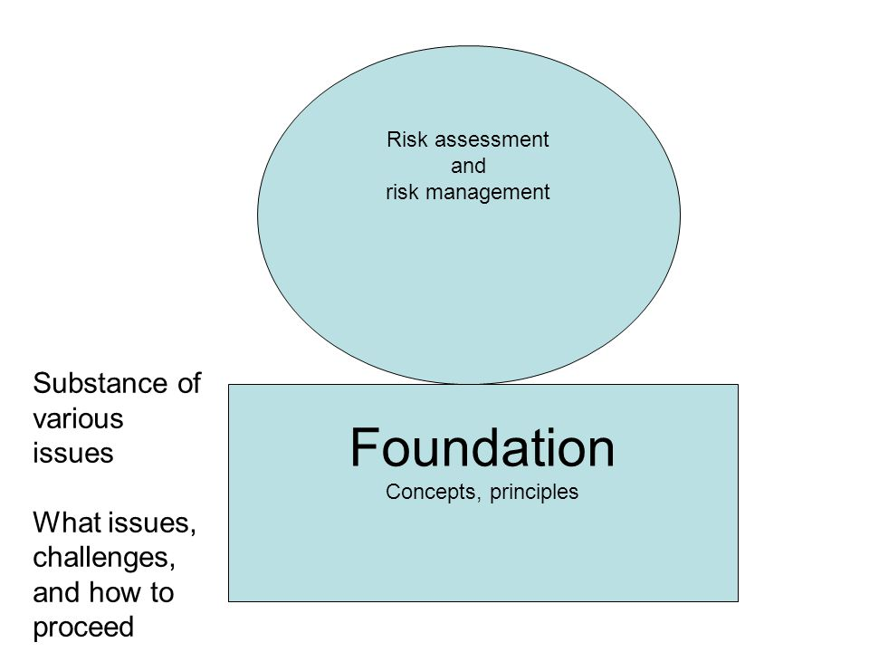 Foundation Concepts, principles Risk assessment and risk management Substance of various issues What issues, challenges, and how to proceed