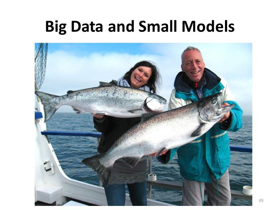 Big Data and Small Models © Richard C. Larson 201449