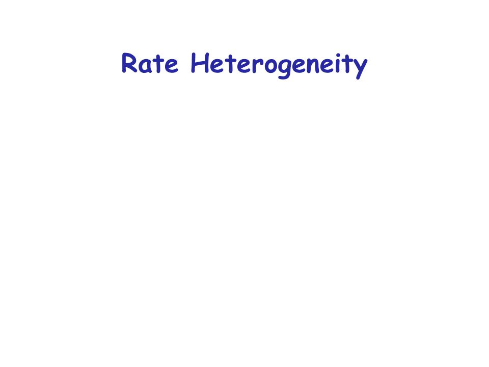 Rate Heterogeneity
