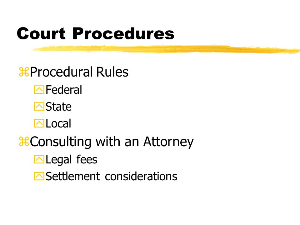 Court Procedures zProcedural Rules yFederal yState yLocal zConsulting with an Attorney yLegal fees ySettlement considerations