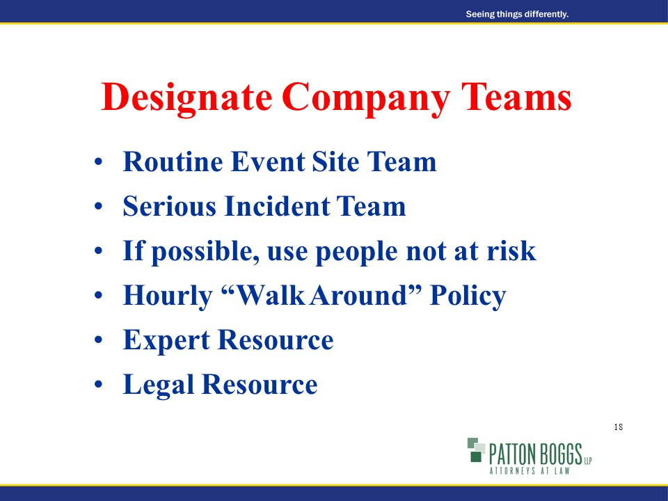 Routine Event Site Team Serious Incident Team If possible, use people not at risk Hourly Walk Around Policy Expert Resource Legal Resource Designate Company Teams 18