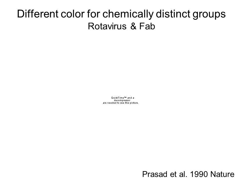 Different color for chemically distinct groups Rotavirus & Fab Prasad et al. 1990 Nature
