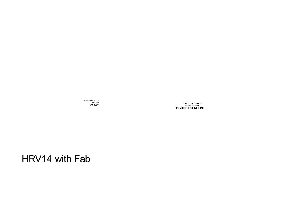 HRV14 with Fab