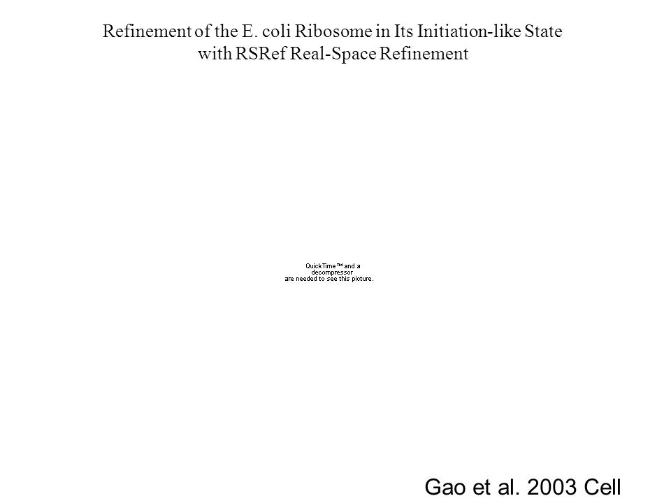 Refinement of the E. coli Ribosome in Its Initiation-like State with RSRef Real-Space Refinement Gao et al. 2003 Cell