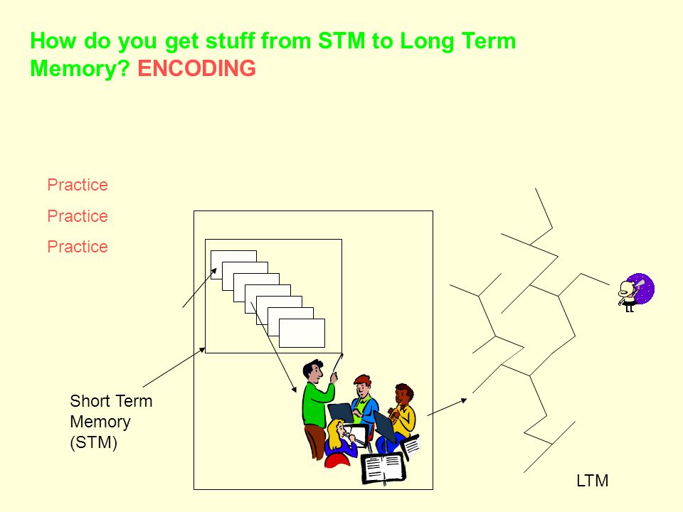 Short Term Memory (STM) LTM How do you get stuff from STM to Long Term Memory ENCODING Practice
