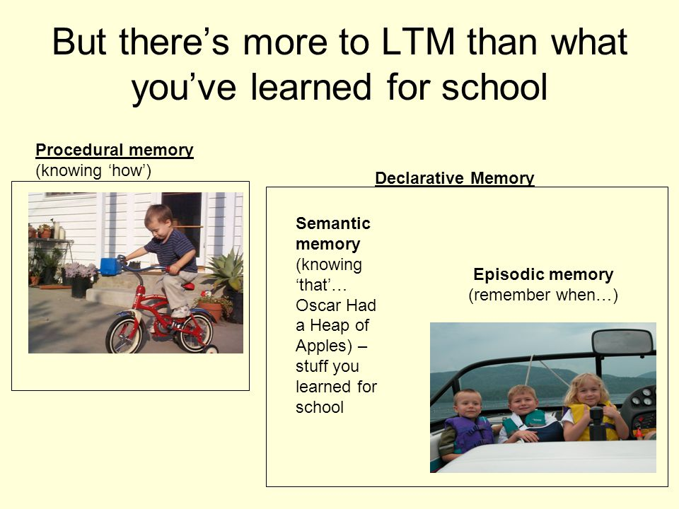 But there's more to LTM than what you've learned for school Procedural memory (knowing 'how') Declarative Memory Semantic memory (knowing 'that'… Oscar Had a Heap of Apples) – stuff you learned for school Episodic memory (remember when…)