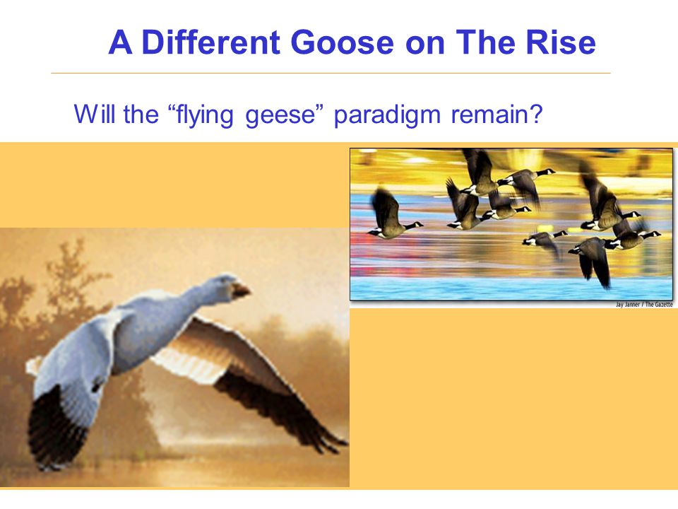 """Will the """"flying geese"""" paradigm remain? A Different Goose on The Rise"""