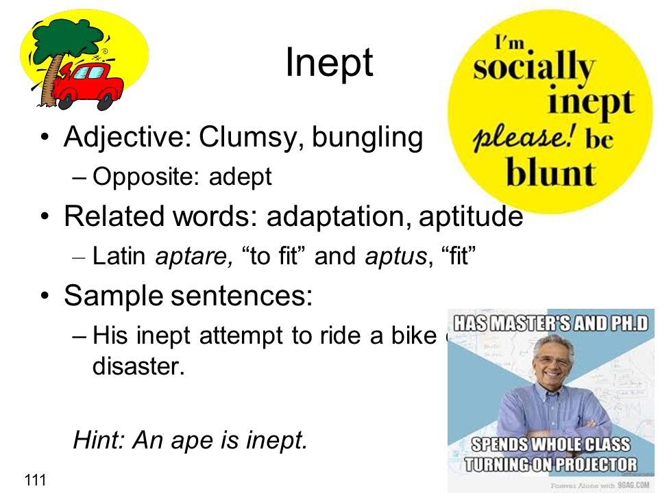 Inept Adjective: Clumsy, bungling –Opposite: adept Related words: adaptation, aptitude – Latin aptare, to fit and aptus, fit Sample sentences: –His inept attempt to ride a bike ended in disaster.